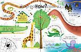 Книга с окошками Lift-the-Flap Questions and Answers about Animals, фото 4