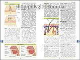 Книга Illustrated Medical Dictionary 4th Edition, фото 5
