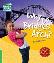 Книга Why do Bridges Arch?