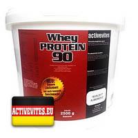Протеин Activevites WHEY PROTEIN 90 (2500 грамм.)