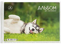 """Альбом для рисования 20 л, A4, спираль, лак """"Школярик"""" / Собака в траве"""