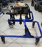 Б/У Задне-опорные ходунки Rifton Pacer Gait Trainers 502 medium Size 2 (Used), фото 2