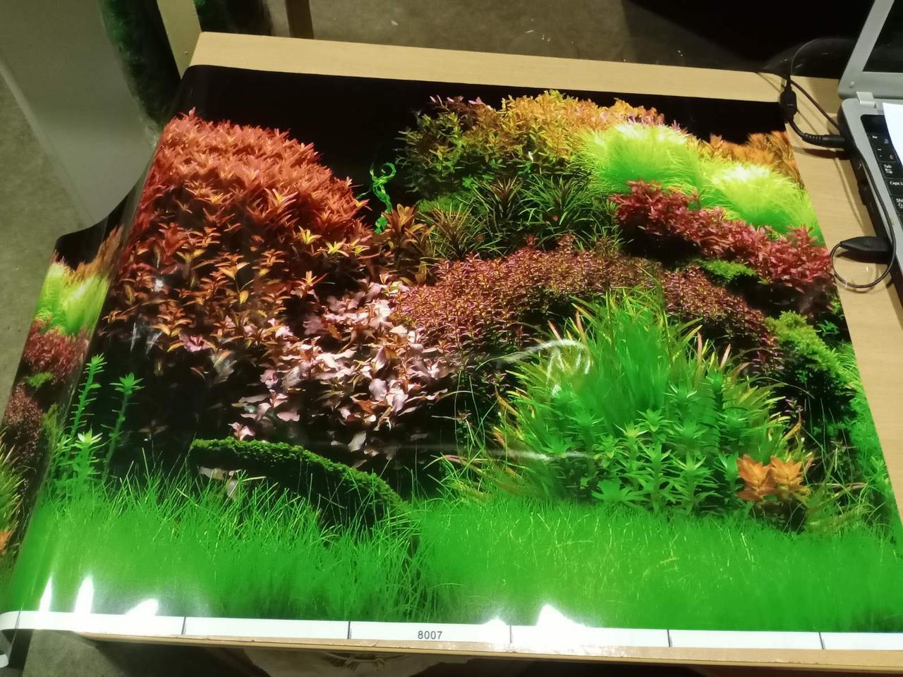 Фон аквариумный с растениями 8007