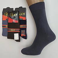 Мужские носки демисезонные cotton Z&N Турция 41-44р ассорти НМД-0510812