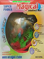Магический шар-головоломка (шар-лабиринт)Magical Intellect Ball, фото 1