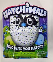 Игрушка сюрприз яйцо - Hatchimals Who Will You Hatch, фото 1