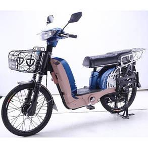 Электровелосипед Energy Power TDL232Z (380 Вт), фото 2