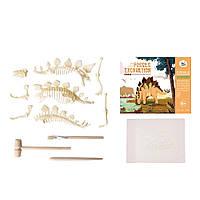 Набор для раскопок Jar Melo. Динозавр. Стегозавр, фото 1