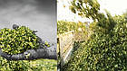 Силосоуборочный комбайн, кормоуборочный комбайн с роторной жаткой сплошного среза CHALLENGER  3, фото 3