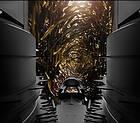 Силосоуборочный комбайн, кормоуборочный комбайн с роторной жаткой сплошного среза CHALLENGER  4, фото 4