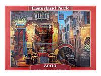 Пазлы Castorland 3000 Наше особое место в Венеции, С-300426
