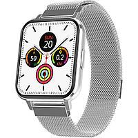 Смарт-часы Smart Watch NO.1 DTX с тонометром Silver (SW0001DTXS)