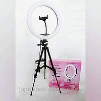 Лампа кольцевая Beauty Live, 33 cм со штативом (1,05м) + держатель для смартфона, набор блогера, подсветка
