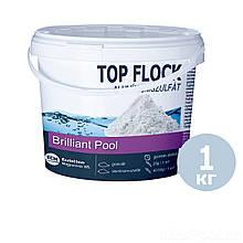 Флокулянт (коагулянт, флокер) в гранулах для воды в бассейне 80012 ECM (Венгрия), 1 кг