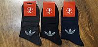 """Мужские демисезонные х/б носки в стиле """"Adidas"""" 40-44"""
