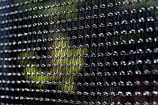 Батут FunFit 252 см з сіткою і драбинкою, фото 3
