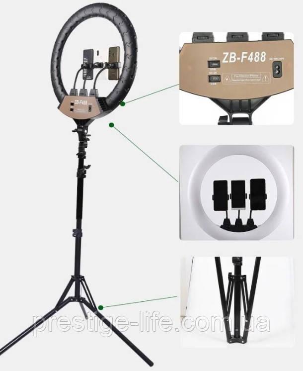Кольцевая лампа ZB-F488 (55 см) со штативом и тремя держателями, для панорамного освещения (серая коробка)