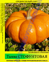 Семена тыквы «Стофунтовая» 10 кг (мешок)