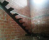 Каркас лестницы на монокосоуре. Лестница на центральной несущей., фото 3