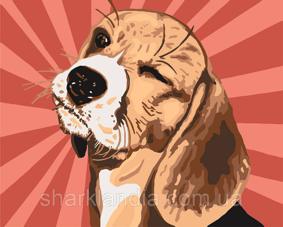 Картина по номерам Бигль Поп-арт 40*50см KHO4154 Прикольные животные Пес собака щенок