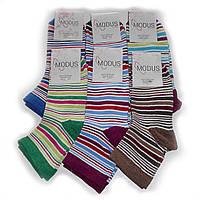 Женские носки Modus - 8,00 грн./пара (полоска), фото 1