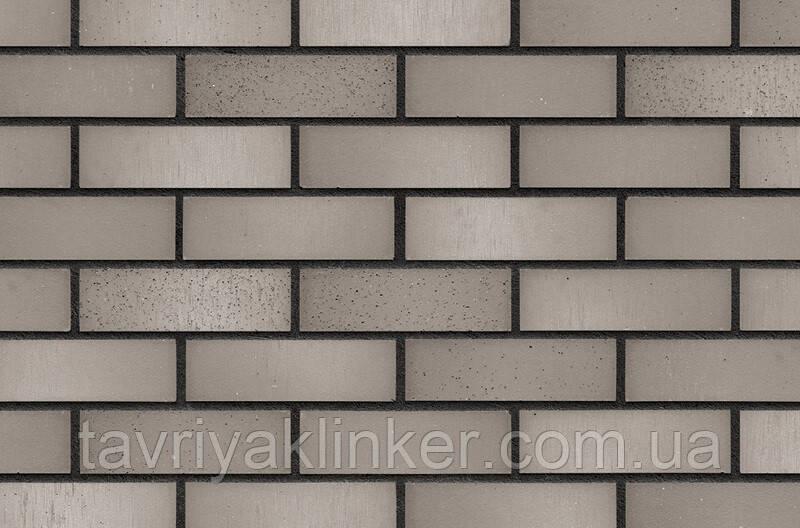Клинкерная фасадная плитка Winter field (HF74), 240x71x14 мм