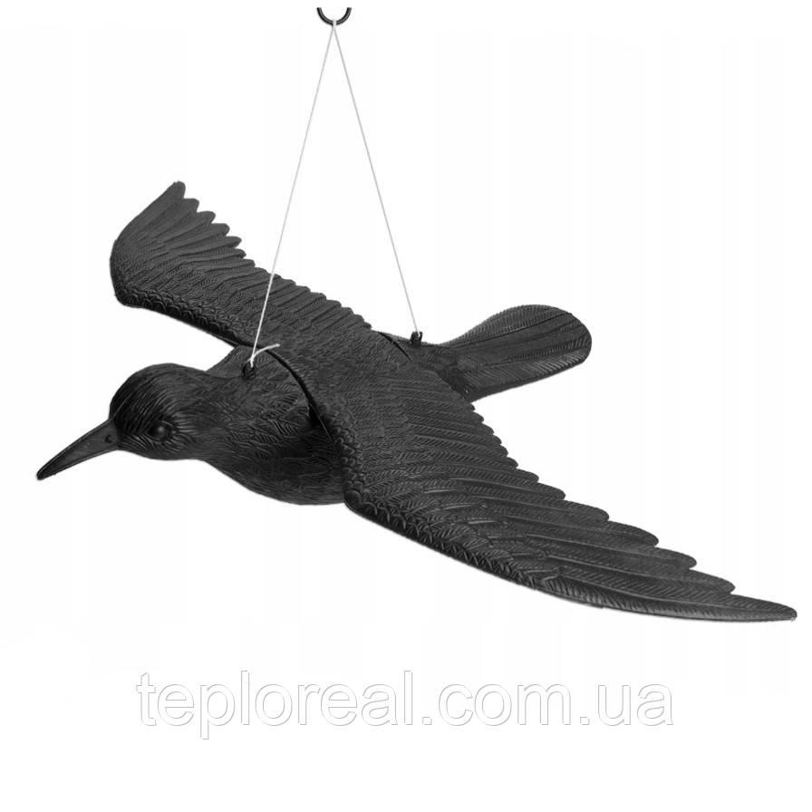 Ворон для відлякування птахів з крилами