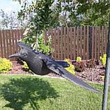 Ворон для відлякування птахів з крилами, фото 2