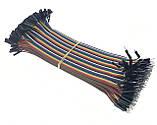 40шт дюпон кабель 20см, папа - папа, фото 2