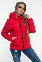 Куртка женская демисезонная MODA 00047/1 (42-52) XS-XXL Красный