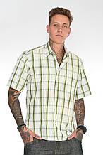 Летняя рубашка в клетку с коротким руковом 215-10 зеленая