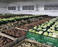 Построить овощехранилище под ключ в сжатые сроки