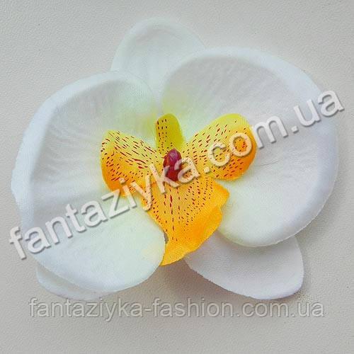 Орхидея фаленопсис 9см, белая с оранжевой серединкой
