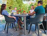 Стулья садовые Allibert Keter Curver для сада террасы и кафе, фото 3