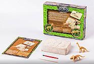Набор для проведения раскопок динозавры Dino Excavation DEX-01-01, фото 2