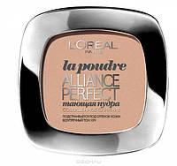 Компактная пудра для лица Альянс Перфект L'Oreal Paris Alliance Perfect Compact Powder