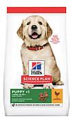 Hills puppy large breed сухой корм для щенков крупных пород с  курицей - 2,5 кг