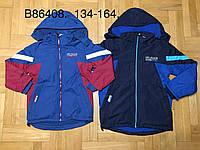 Куртка на флисе для мальчиков оптом, Grace, 134-164 см,  № В86408