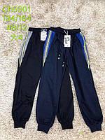 Спортивные штаны для мальчиков оптом, S&D, 134-164 см,  № CH-5901