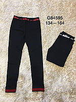 Лосины для девочек оптом, Grace, 134-164,  № G84595