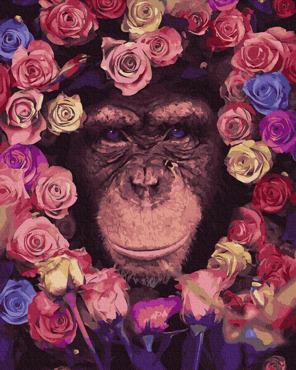 Картина по Номерам Шимпанзе 40х50см RainbowArt