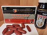 Таблетки Германская овчарка для потенции 10 шт уп, фото 2