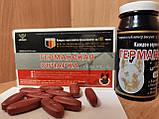 Таблетки Германская овчарка для потенции 10 шт уп, фото 4