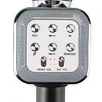 Bluetooth караоке-мікрофон Karaoke DM WS1818