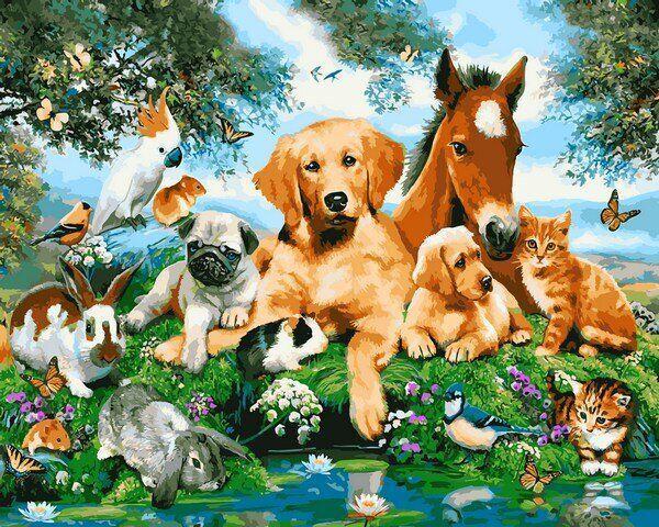 MR-Q2228 Набор живописи по номерам Домашние животные