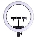 Набір RL-21 Професійна кільцева лампа 54см з штатив-триногою, пультом, USB, трьома кріпленнями, фото 4