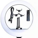 Набір RL-21 Професійна кільцева лампа 54см з штатив-триногою, пультом, USB, трьома кріпленнями, фото 5
