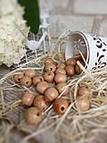 Бусины из светлого дерева, круглые, 30 шт,  диаметр - 2 см.,  15 гр., фото 2