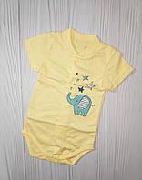 Боди на кнопочках короткий рукав Польша хлопок для новорожденного на выписку