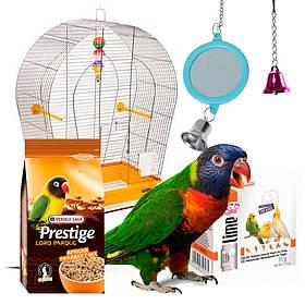 Набор для попугая